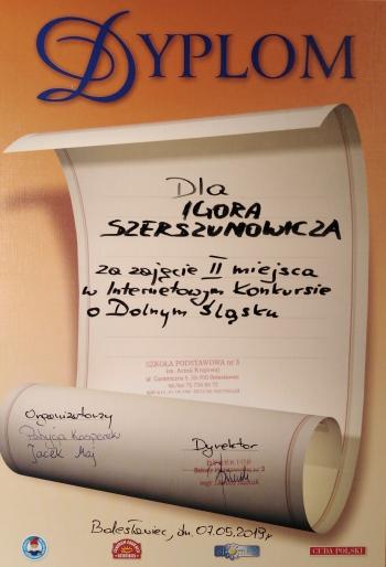 Szerszenowicz