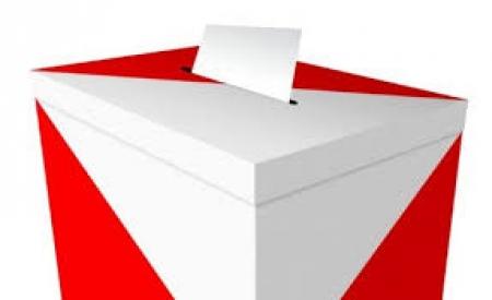 Wybory do Młodzieżowej Rady Miasta Bolesławiec