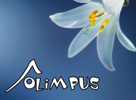 """Nasi uczniowie laureatami """"Ogólnopolskiej Olimpiady Przedmiotowej OLIMPUS"""""""