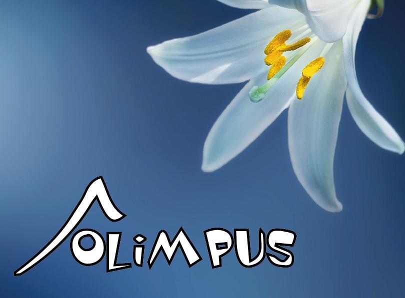 """Nasi uczniowie laureatami """"Ogólnopolskiej Olimpiady Przedmiotowej OLIMPUS"""" z języka"""